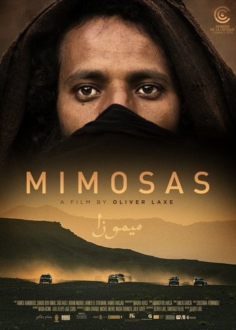 "Poster for the movie ""Mimosas"""