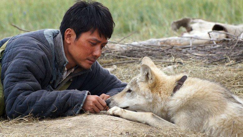 Жан-Жак Анно представил «Тотем волка»