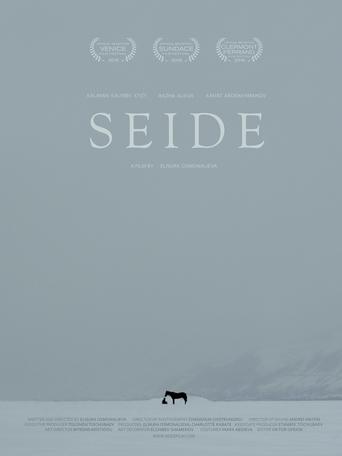 """Постер фильма """"Seide"""""""