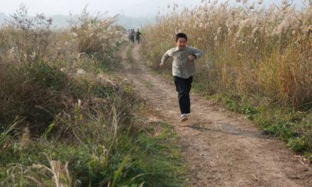 «Хохлатый ибис» — лучший фильм 39-го Московского Международного кинофестиваля