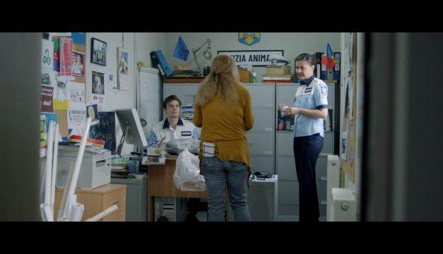 «#засранка» признана лучшим фильмом 43-го Московского международного кинофестиваля